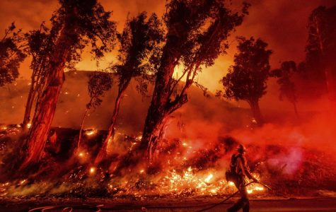 California Wildfires: What can we do?